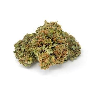 20G Susz White Russian 19% CBD 0.2% THC