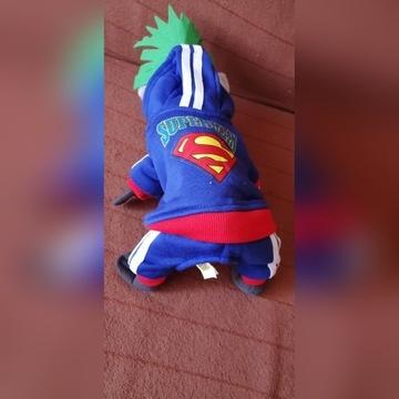 Ubranko dla psa Superman, rozmiar XS