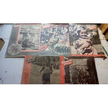 Żołnierz Polski nr.16 17 18 19 20  1947 r.nowe zwr