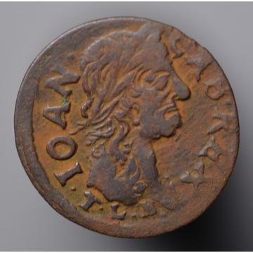 Nr 10 - szeląg koronny 1664