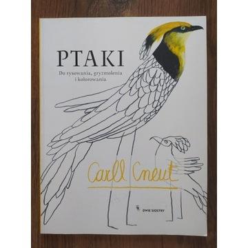 Ptaki Do rysowania, gryzmolenia i kolorowania