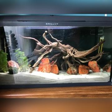 Zestaw akwarium Aquael Brillux 112l LED + filtr+UV