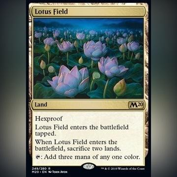 Lotus Field  - Core 2020