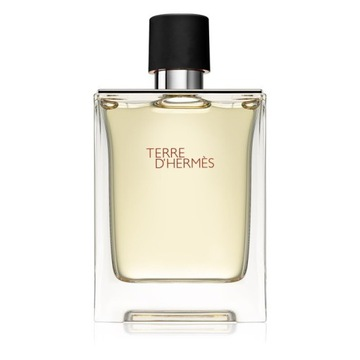 Hermes Terre d'Hermes Perfum 100ml