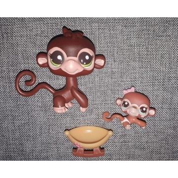 LPS małpki kpl