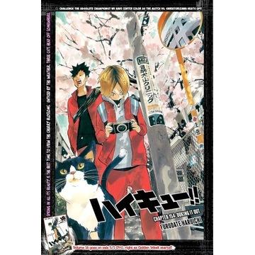 Plakat z anime/ mangi Haikyuu  A3 nekoma