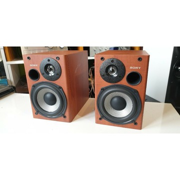 Sony  SS-CCPX11, monitory