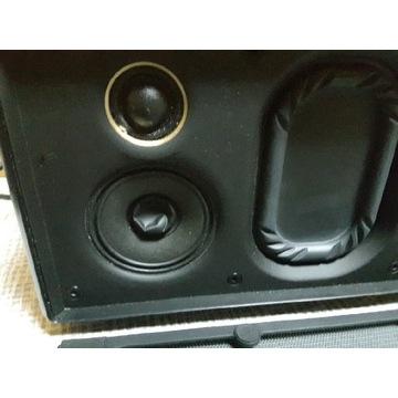 Głośnik sony srs x88