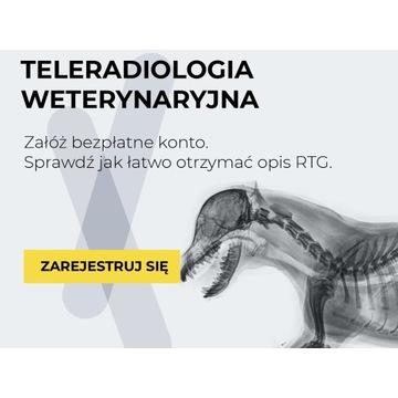 Opis zdjęcia RTG (kot, pies), weterynaria