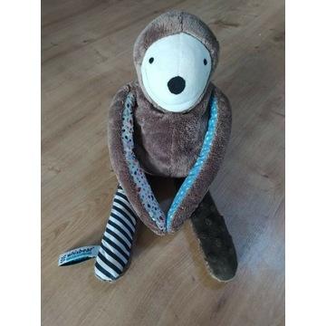 Whisbear leniwiec szumiś