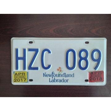 Newfoundland Labra  tablica rejestracyjna oryginal