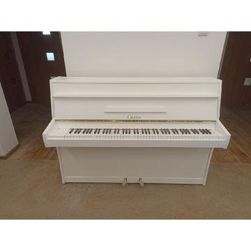 Pianino Calisia białe gwarancja