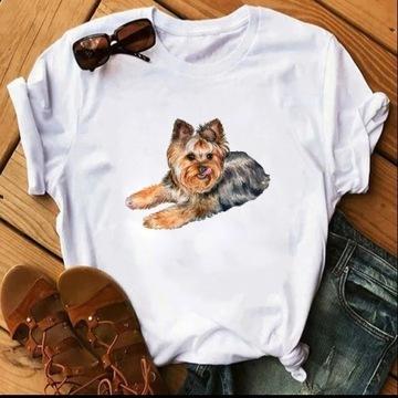 Koszulka t-shirt yorkshire terrier York lato