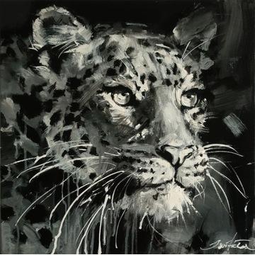 Ewa Świtała - Jaguar
