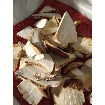 Białoporek Brzozowy suszony 180 g plastry