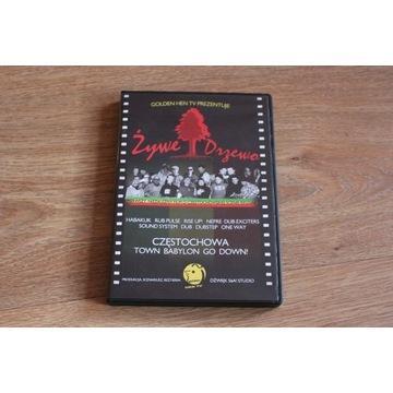 Żywe Drzewo DVD Reggae Częstochowa Rasta Habakuk