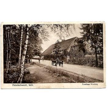 Pustki- Wyszki , (Wustung), 1928 rok.
