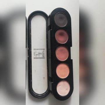 Używana paleta cieni Makeup Atelier Paris T19