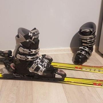 Buty narciarskie Lowa
