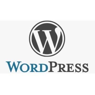 WordPress pluginy szablony Astra Divi i 482 innych
