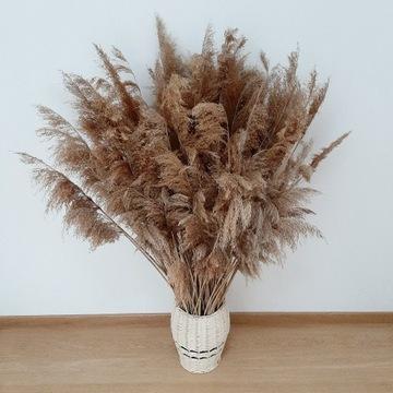 Sucha naturalna trawa boho bukiet suche trawy