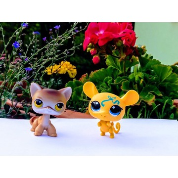 LPS kotek shorthair UNIKAT+ mysz do towarzystwa:)