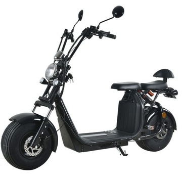 2*20Ah Citycoco Skuter Elektryczny EEC Harley