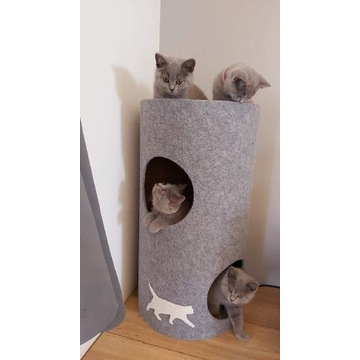 Drapak dla kota Tuba