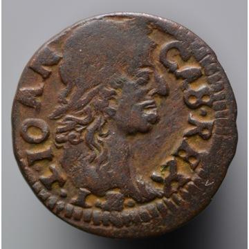 Nr 20 - szeląg koronny 1664