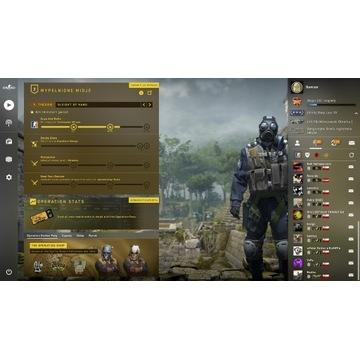 Konto Steam CS:GO Prime, Ranga GOLD 3, MG1 - PSC