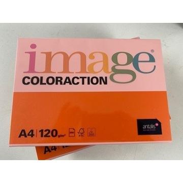 Papier IMAGE AMST 120gr 2 ryzy / LIKIWDACJA FIRMY