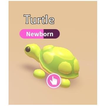 Roblox Adopt Me Turtle (żółw) FR