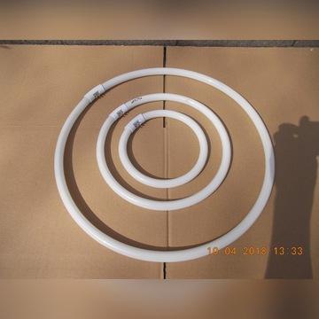 Świetlówka kołowa 40W trzonek G10Q barwa 4000k