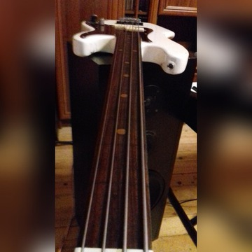 Fretless bass -project