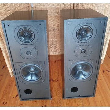 Kolumny Bowers & Wilkins B&W DM2 Series 2