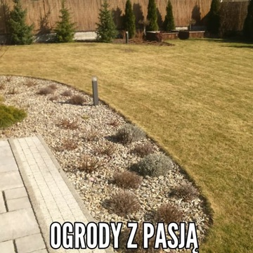Trawniki Kielce zakładanie, pielęgnacja renowacja