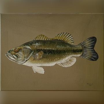 Ryba - olej - Szewczyk K.