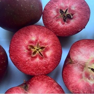 Jabłko Baya Marisa z czerwonym miąższem 1 kg