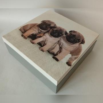 Szkatułka drewniana z psami