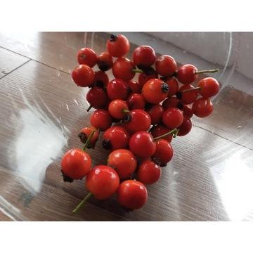 owoc dzikiej róży 1kg,z beskidzkich lasów.