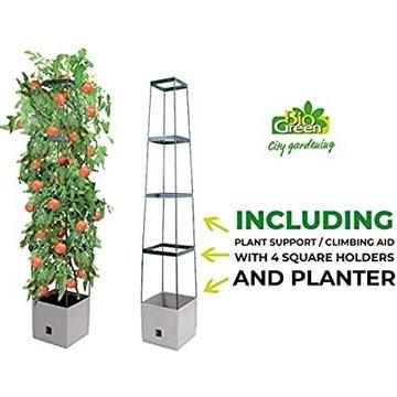 Konstrukcja, podpora do uprawy roślin, pomidorów