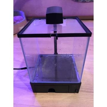 akwarium 19x19 plus gratisy termometr i grzałka