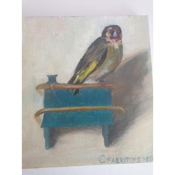 Szczygieł kopia Fabritiusa olej x20x20
