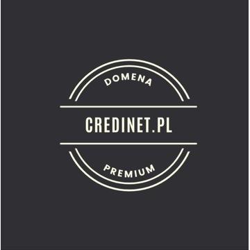 Domena Credinet.pl   Premium