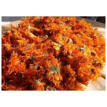 Suszony kwiat nagietek lekarski 1000g (1kg)