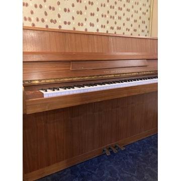 Pianino - TH.Betting