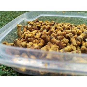 Pierzga Pszczela - Nie Suszona - Świeża z Puszczy