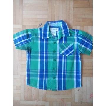 Toughskins Koszula 92
