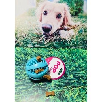 Piłka Gryzak dla Psa|| Zabawka edukacyjna