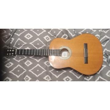 Gitara special edition classic
